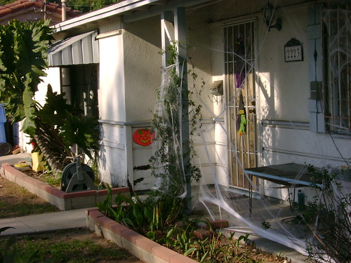 Halloween Decorations (1 of 2)