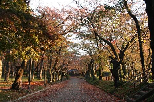 千秋公園久保田城表門前