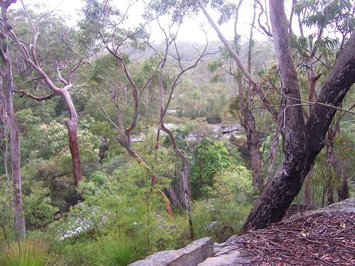 Piles Creek Girrakool
